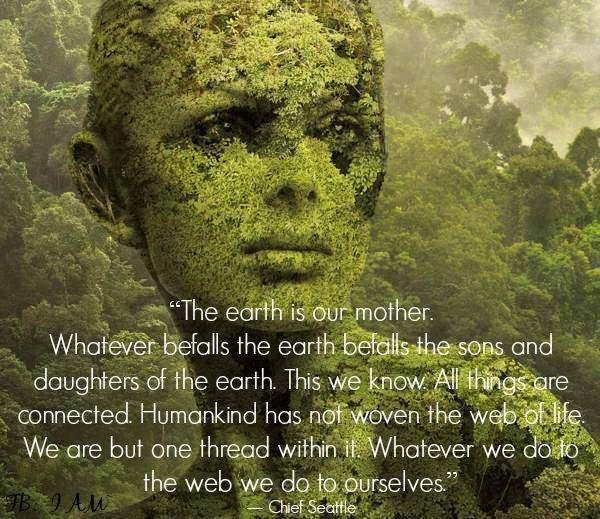 Images Of Nature With Quotes For Facebook: Native American Quote Banners