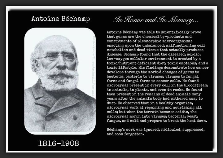 Tribute to Antoine Béchamp