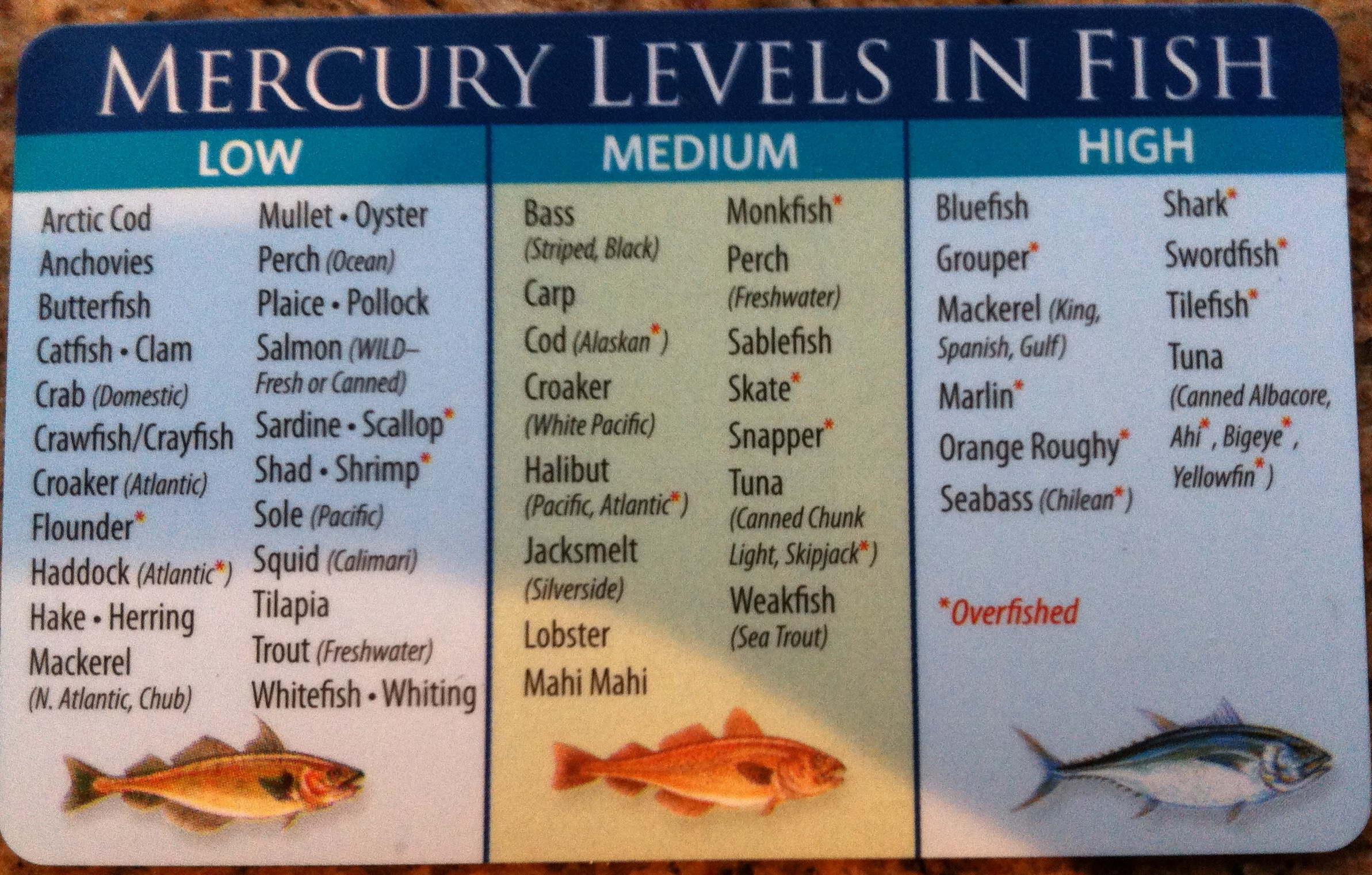 mercury levels in fish vs vaccine mercury