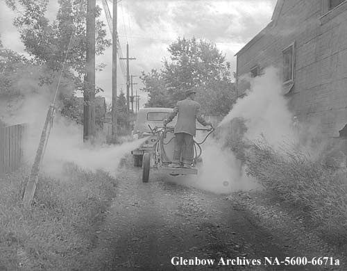 Spraying alleys, Calgary, Alberta. August 1954.  Spraying against spread of polio!
